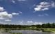 Il progetto:servizio di progettazione specializzato per laghetti con Koi